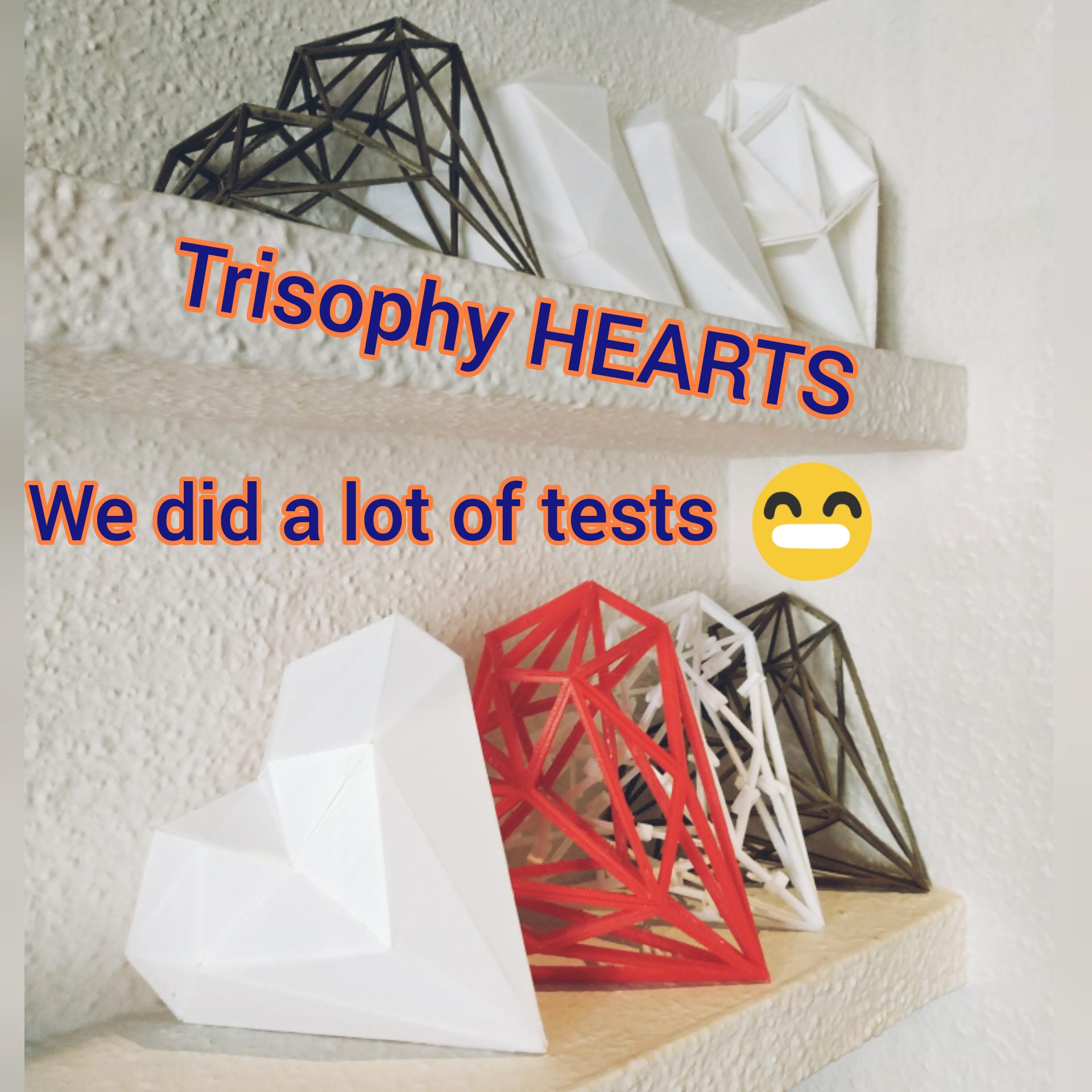 HEART PLA 3D puzzles